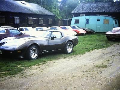 About Us :: Corvette Kingdom
